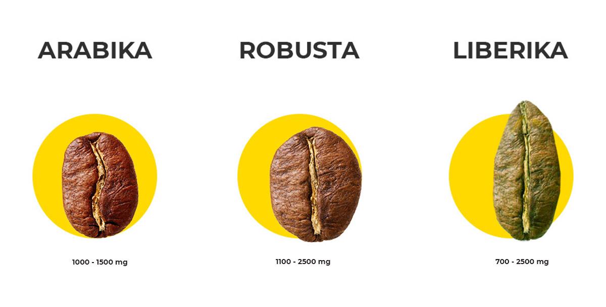 Kofeinas pagal pupelių rūšį