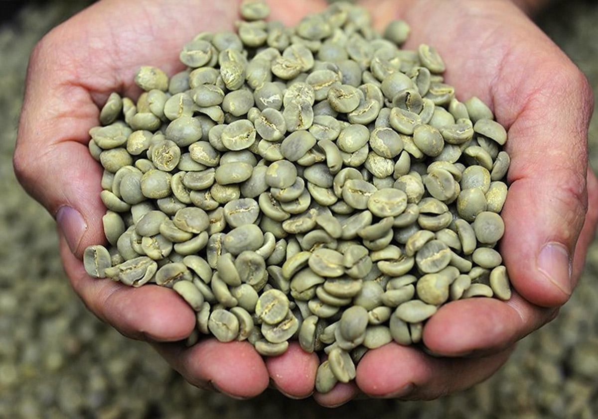 Giling Basah kavos apdorojimo būdas